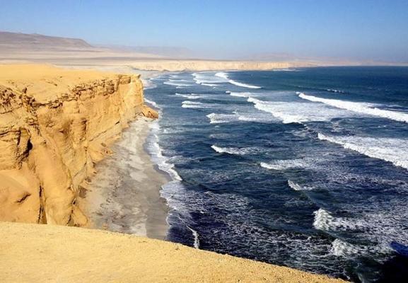 Réserve Paracas Forum Blog Tout Pérou