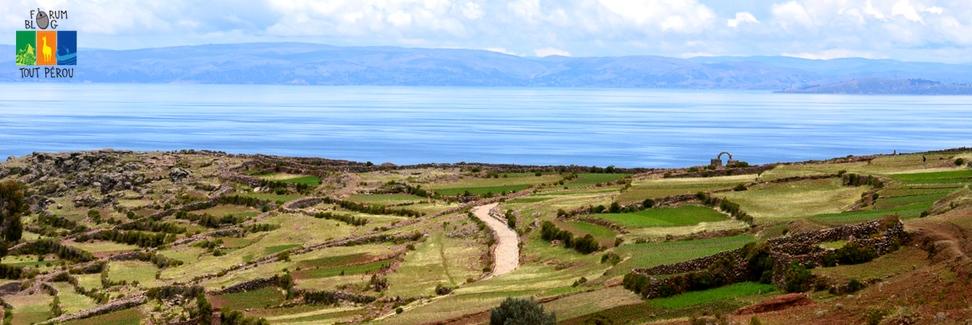 Les champs en bord de mer du Pérou